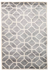 Palace Rug 170X240 Authentic  Modern Handknotted Light Grey/White/Creme ( India)