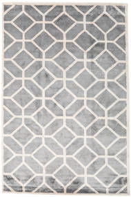 Palace Rug 200X300 Authentic  Modern Handknotted Light Grey/White/Creme ( India)