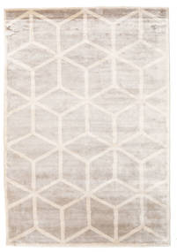 Facets Rug 300X400 Authentic  Modern Handknotted Light Grey/White/Creme Large ( India)