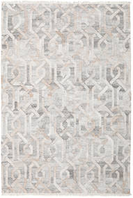 Trinny - Brown/Nature Rug 200X300 Authentic Modern Handwoven Light Grey ( India)