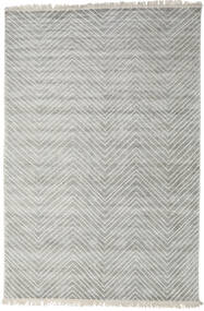 Vanice - Light Grey Rug 200X300 Authentic  Modern Handknotted Light Grey ( India)
