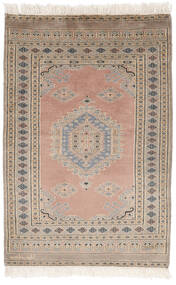 Pakistan Bokhara 2Ply Rug 77X114 Authentic Oriental Handknotted Brown/Dark Brown (Wool, Pakistan)